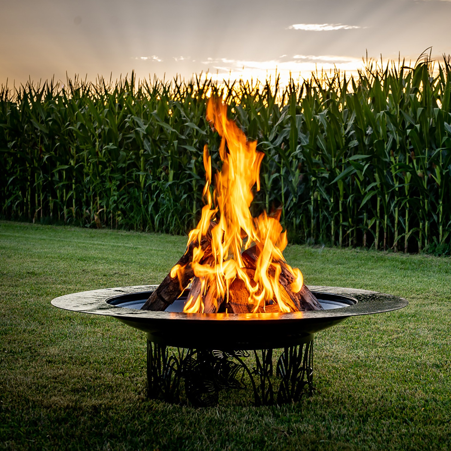 Extreme Fire - Fire Pits