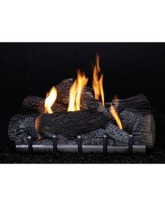 Empire Carol Rose Outdoor 24 Inch Harmony Electronic Ignition Burner and 24 Inch Wildwood Log Set - ONI24 / OLX24WR